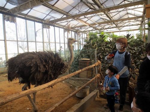 天津Kids11月の様子 写真 その5